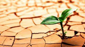 como desarrollar la resiliencia en los niños